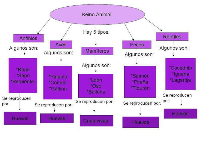 Mapa Conceptual: