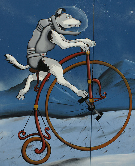 Bike Ride to the Moon 2010