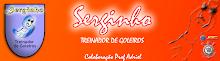 Blog Serginho