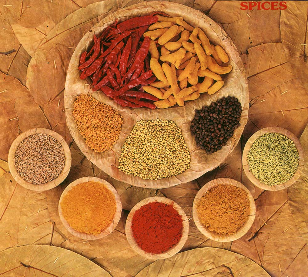 Spice of life ceremony on pinterest spices herbs and for Ancient indian cuisine