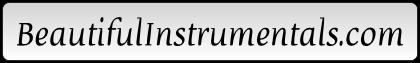 adult standard musicians