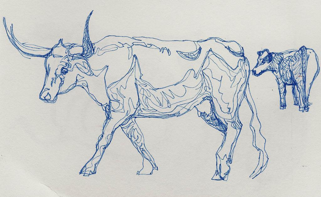Line Art Artists : Now or never sketches cows continuous line drawing