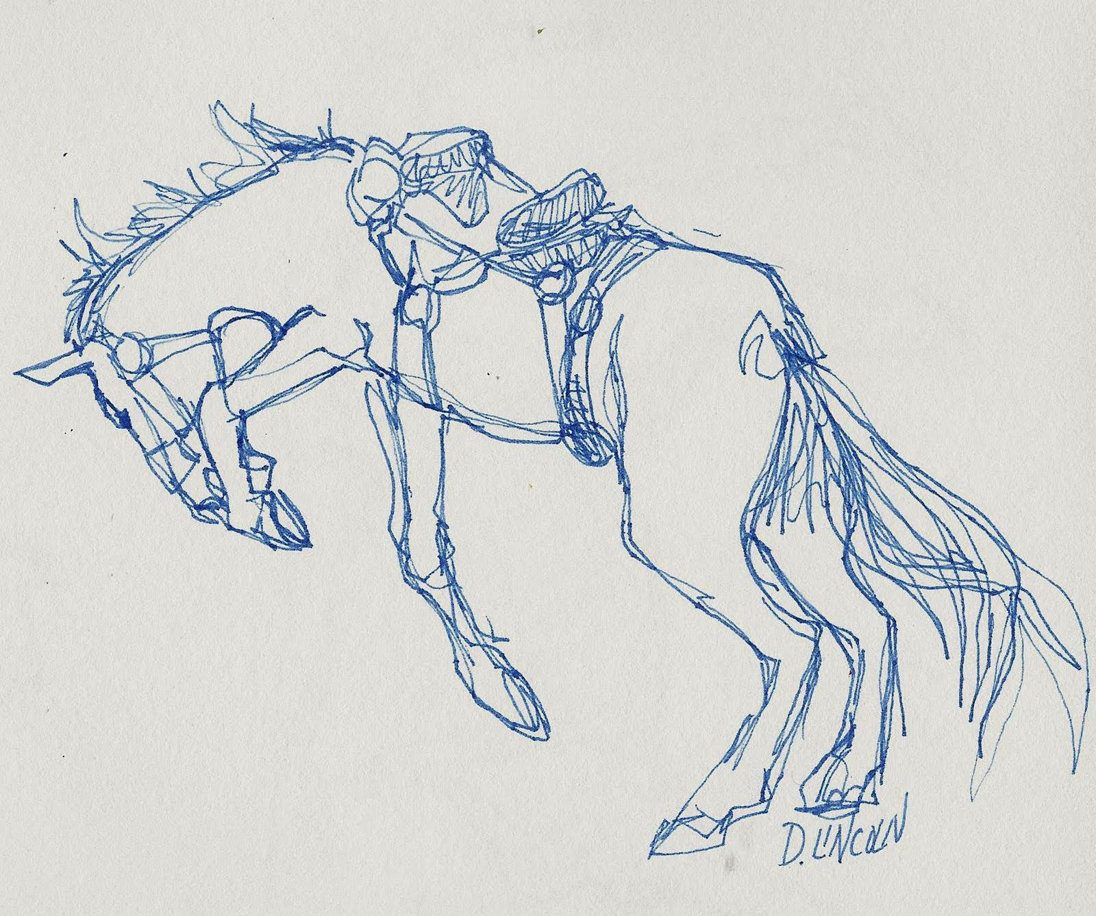 sketches wild horse bucking bronco continuous line drawing