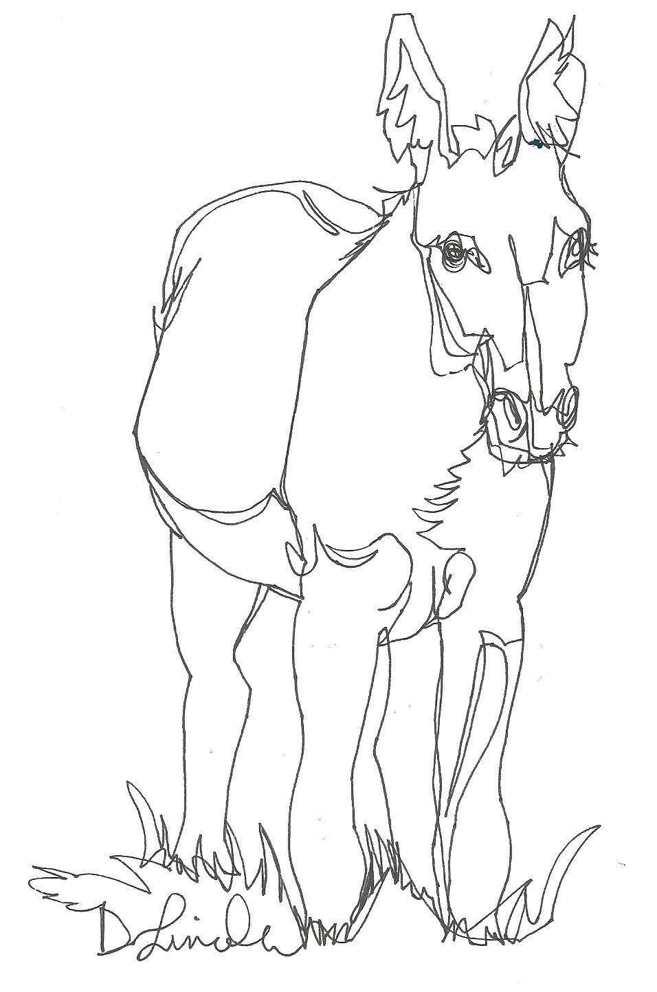 Line Drawing Donkey : Now or never september