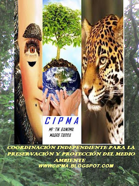 CIPMA