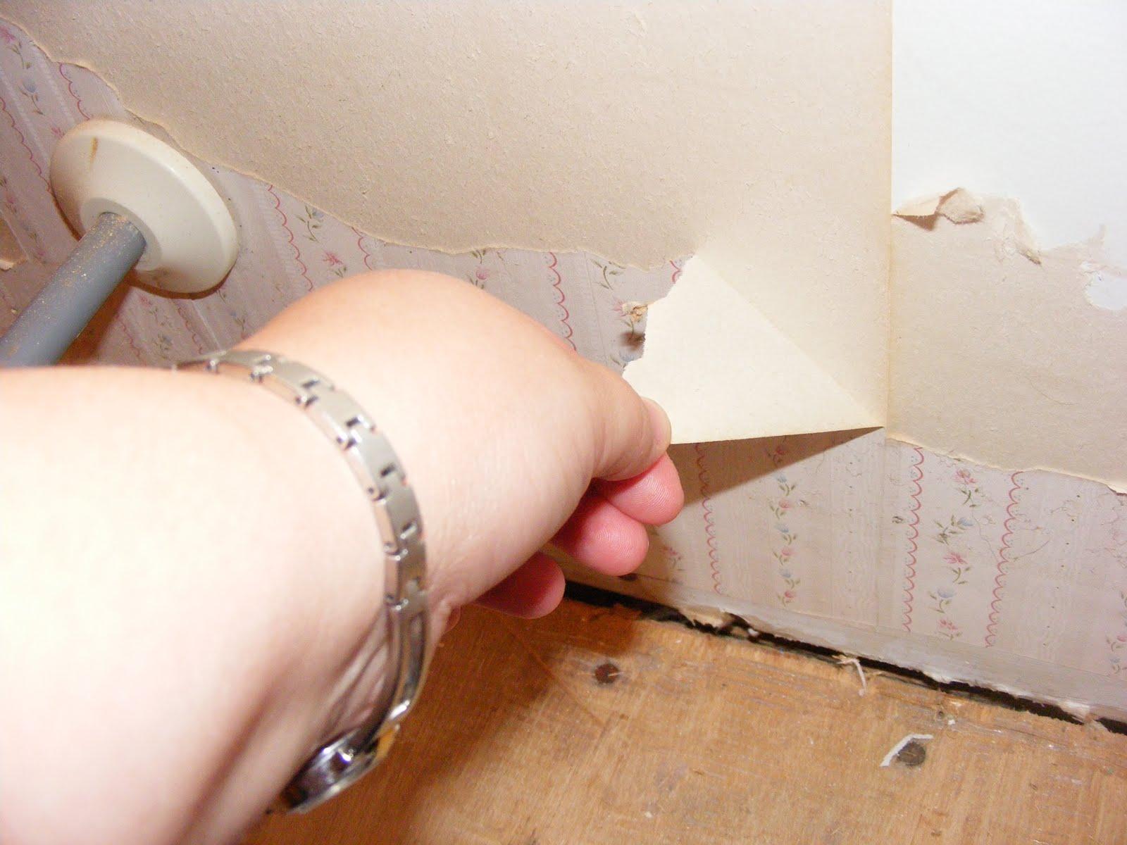 http://2.bp.blogspot.com/_yi1UCscm1z8/TH73CNMBKsI/AAAAAAAABQ8/SLiF2fbhAnI/s1600/DSCF4515.JPG