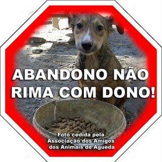 NÃO AO ABANDONO DE ANIMAIS