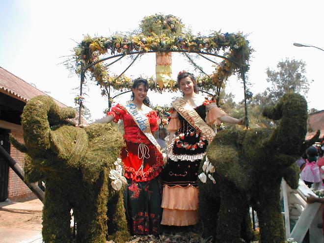 RAINHAS DAS ROSAS 2006 E 2007