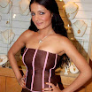 celina jaitley in saree 2011