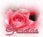 MªJesus y sus Rosas