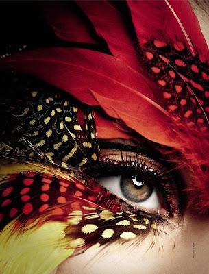 feather eyelashes, eye, feathers, bird, feather lashes, feathers, eyeball