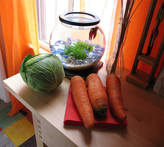 Carrots and Cabbage and Fish