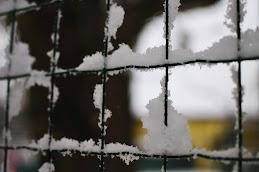 Neve a sorpresa..