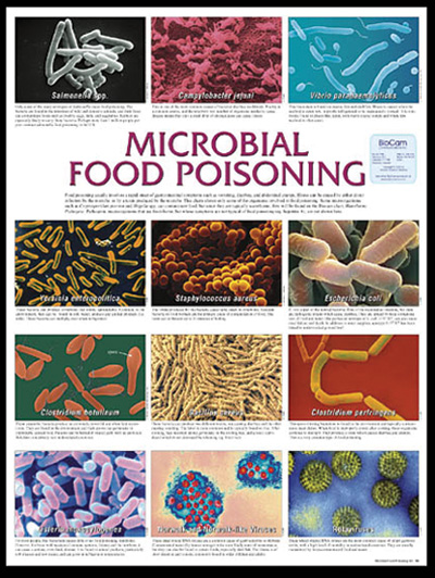 how to get food poisoning on purpose