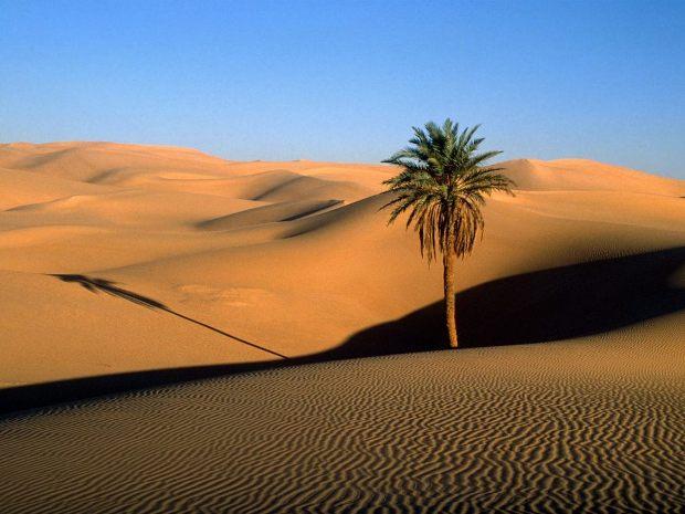Kembara mencari Wadi