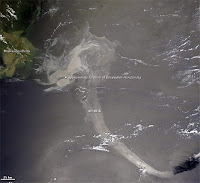 Photo courtesy of NASA showing the oil slick from the Deepwater Horizon rig flowing into the Gulf Loop Current