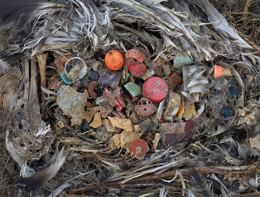 vad är plast gjort av