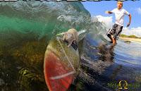 Surf Mouse - Agora eu já vi de tudo