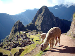 RUINAS DE MACHUPICCHU.