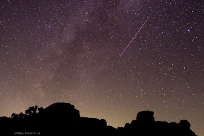 A meteor falls during the Perseid Meteor Shower over Joshua Tree National Park
