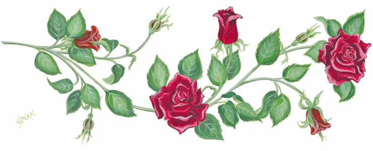 Cliparts pink roses,the