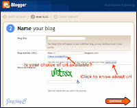 Screen capture on 'Name Your Blog'