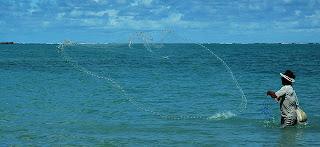 Pescador de tarrafa no mar da Praia Formosa Cabedelo, fevereiro/2006 - Foto: Lilia Tandaya