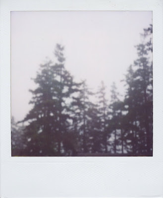 Erin Curry art- Haystack polaroid spruce pine blur