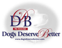 A nonprofit organization dedicated to freeing the chained dog,