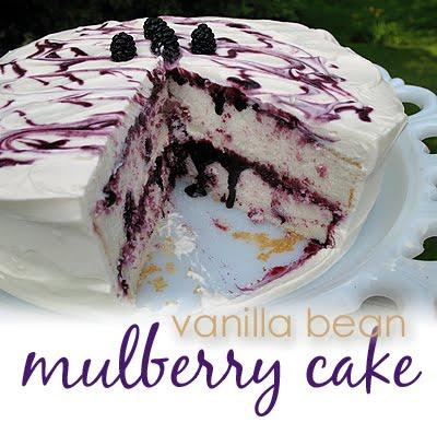 Mulberry Cake Recipe