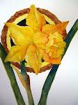 Daffodil ....