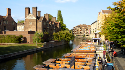 Pushing a boat with a pole is called punting. Here, punts gather in family units for warmth overnight