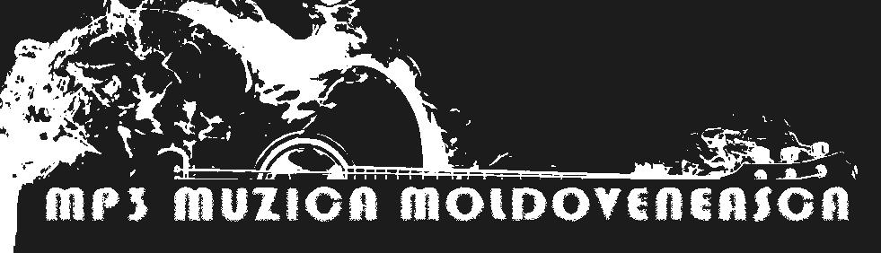 MUZICA MOLDOVENEASCA, Muzica de Petrecere, Muzica Populara