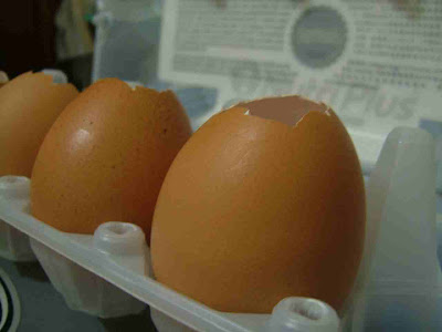 Egg farm fetish