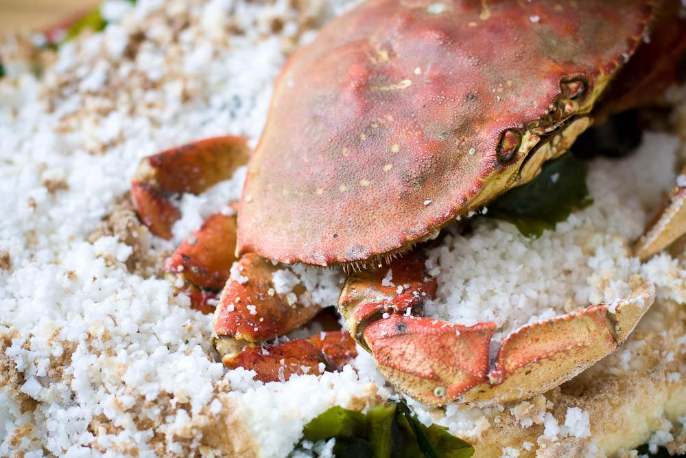 Salt Encrusted Crab