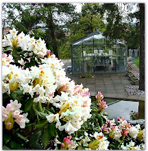 Växthuset, vår