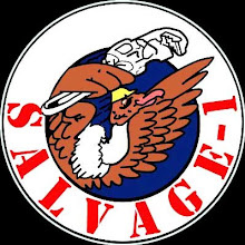 Salvage 1