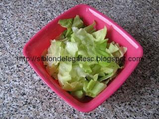 salata cu snitel