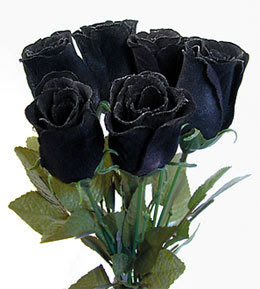 Missing You Like A Black Rose.