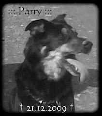 Tschüss, mein Freund Parry
