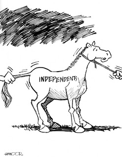 dailytimes newspaper cartoon pakistan