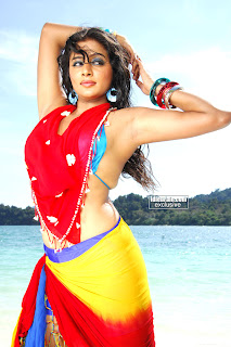 Priyamani  hot  photos  collection