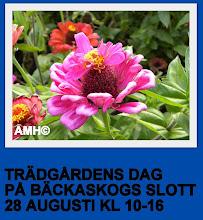TRÄDGÅRDSDAG 28 AUG