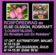 ROSFÖREDRAG