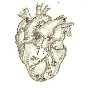 [humanheart]