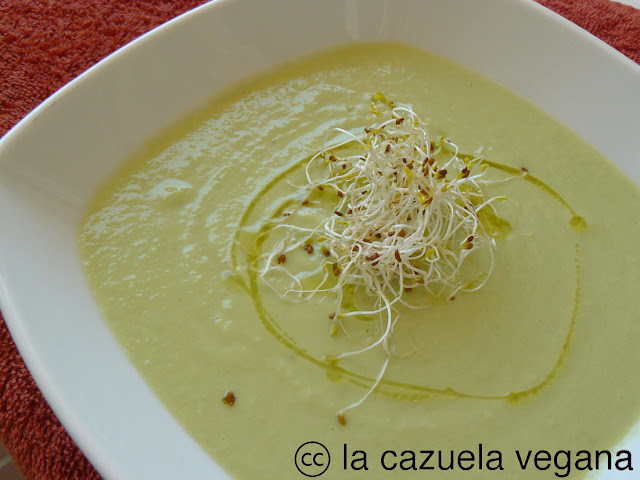 cold soups with olive oil