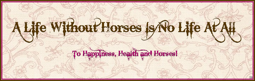 A Life Without Horses Is No Life At All