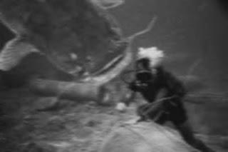 Diver,%2Bgiant%2Bcatfish%2B002.jpg