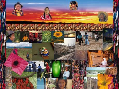 Interculturalidad en México