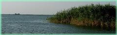 Lacul Violet (Murighiol) la ceas de seară.